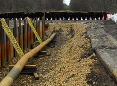 Petroleum Pipeline Replacement in High Quality Wetlands in Trumbull & Portage Counties, Ohio
